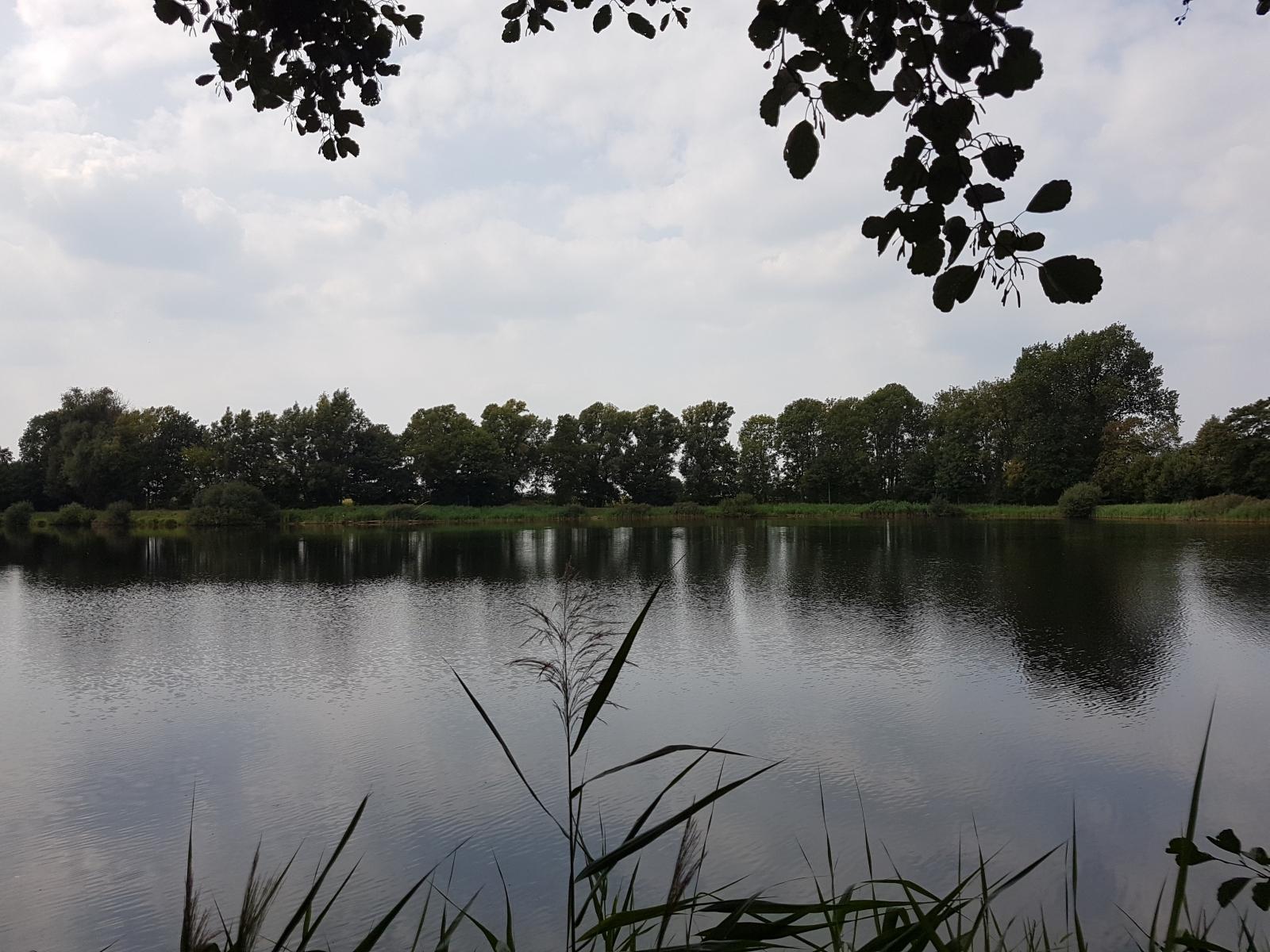 aschendorfersee02