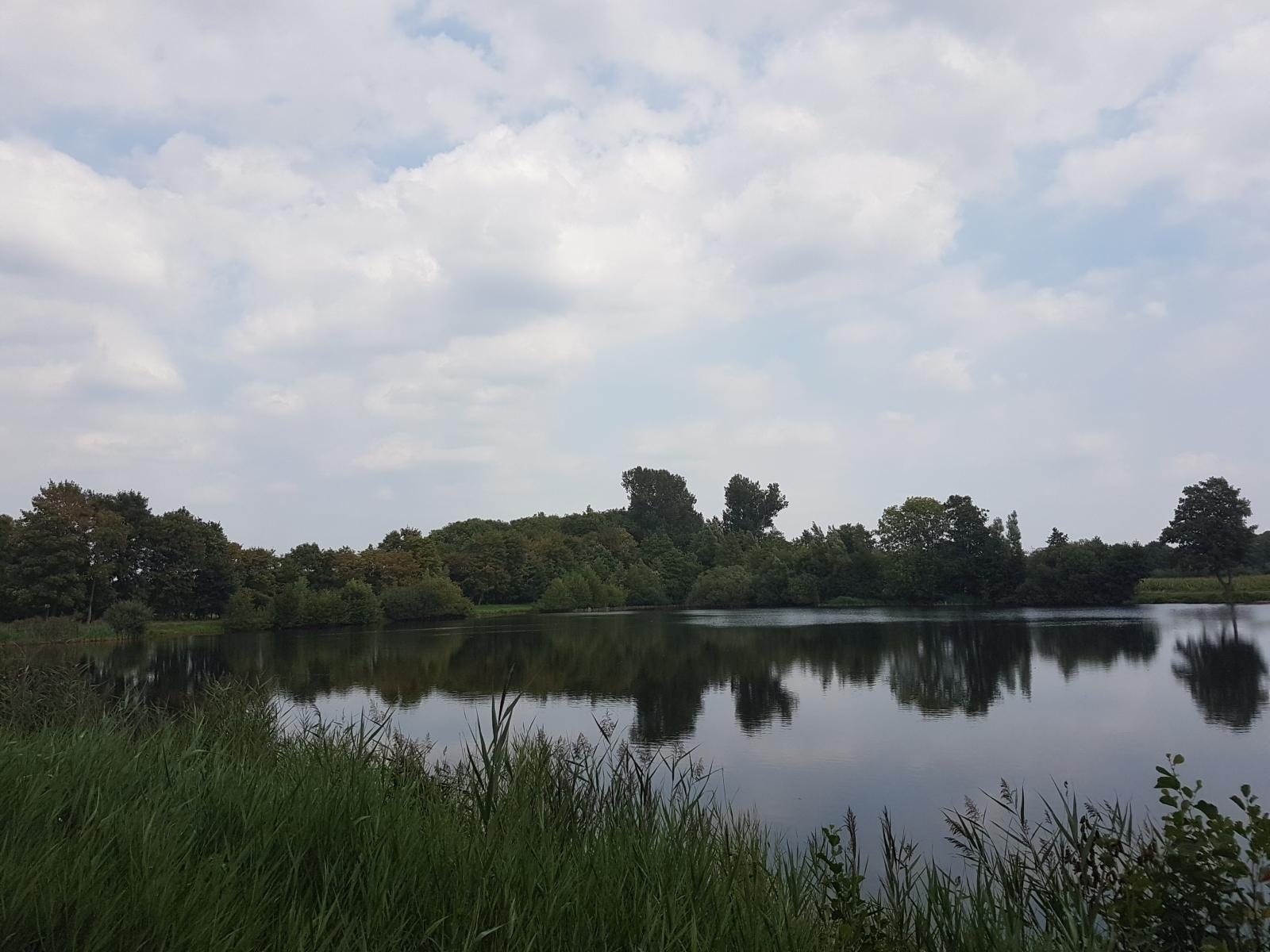 aschendorfersee20