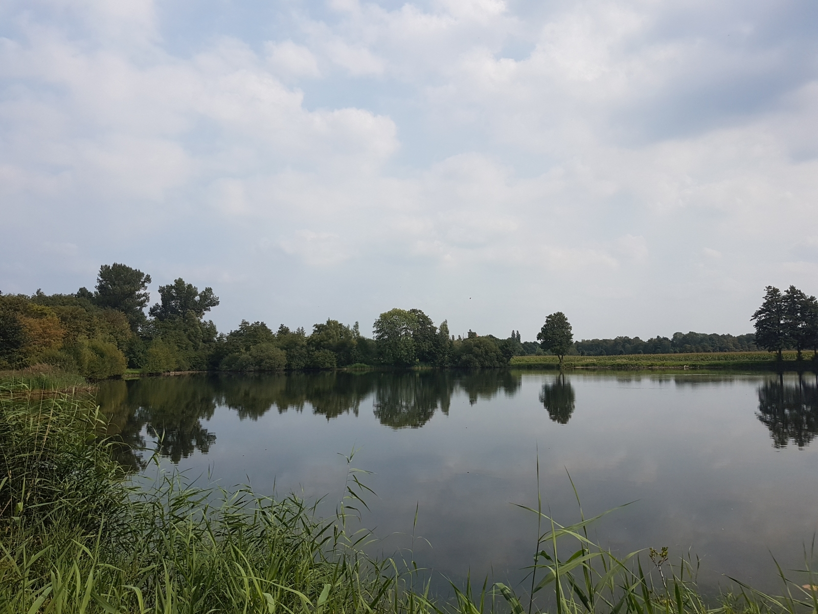 aschendorfersee29