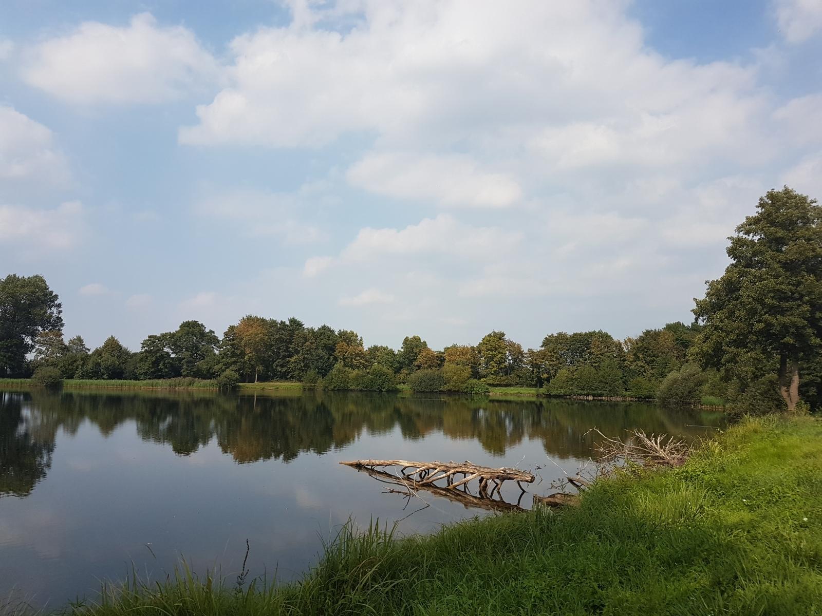 aschendorfersee39