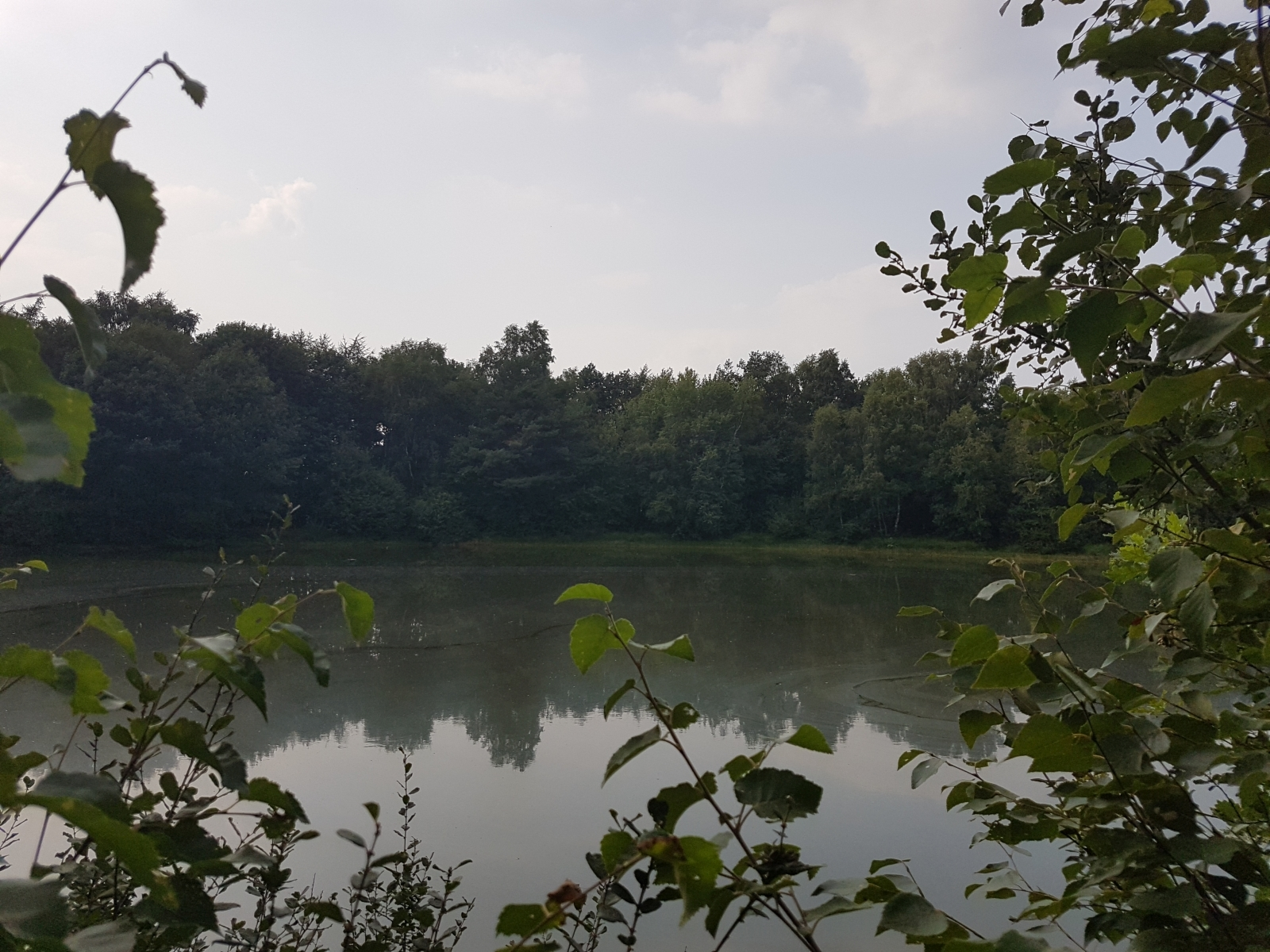 barenbergsee01