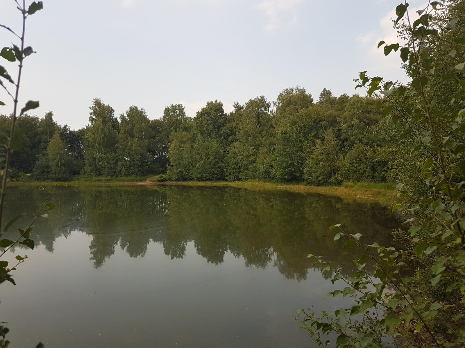 barenbergsee02