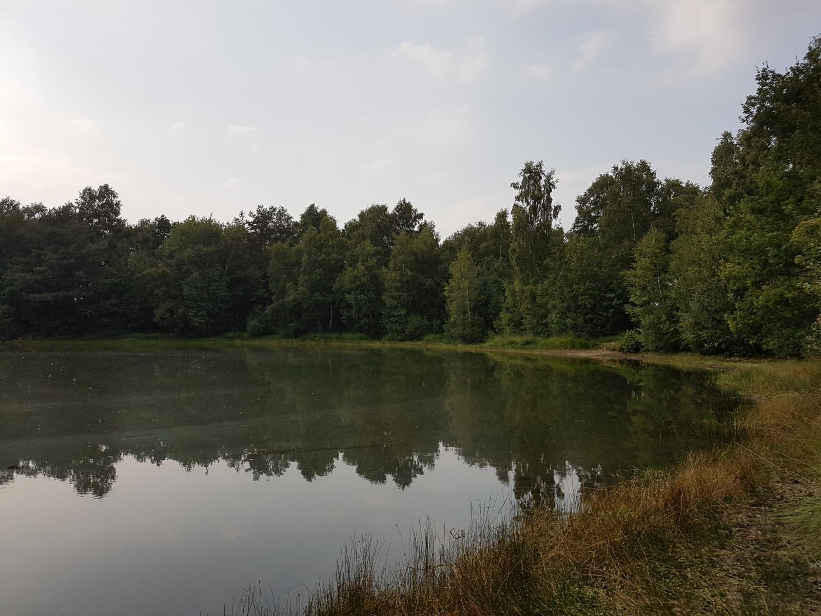 barenbergsee08