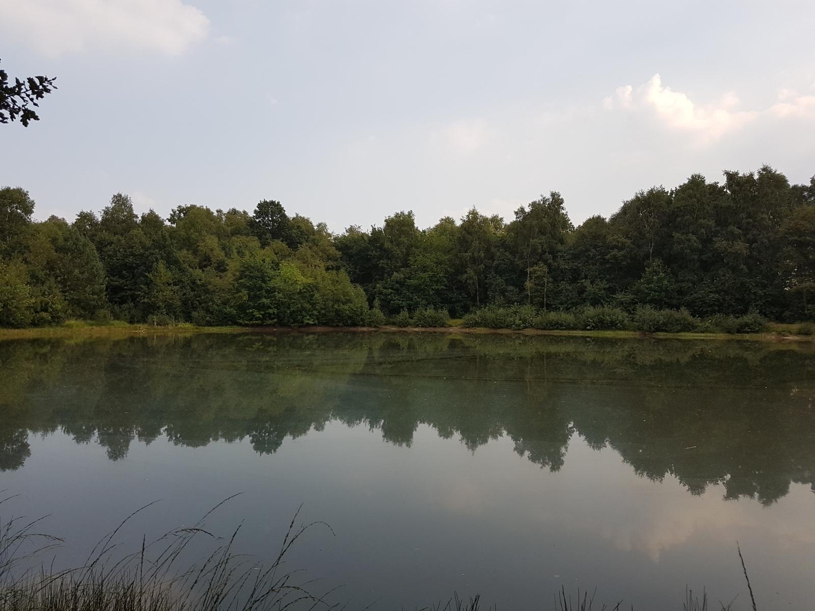 barenbergsee14