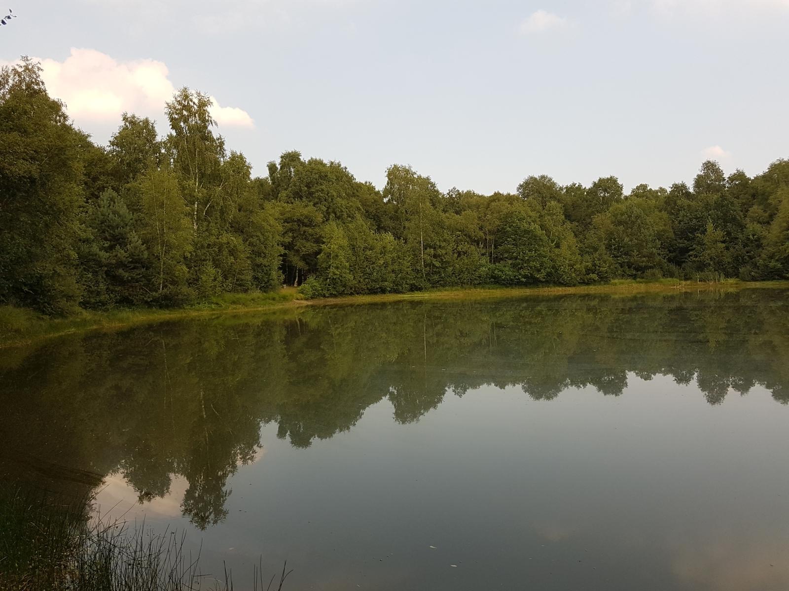 barenbergsee17