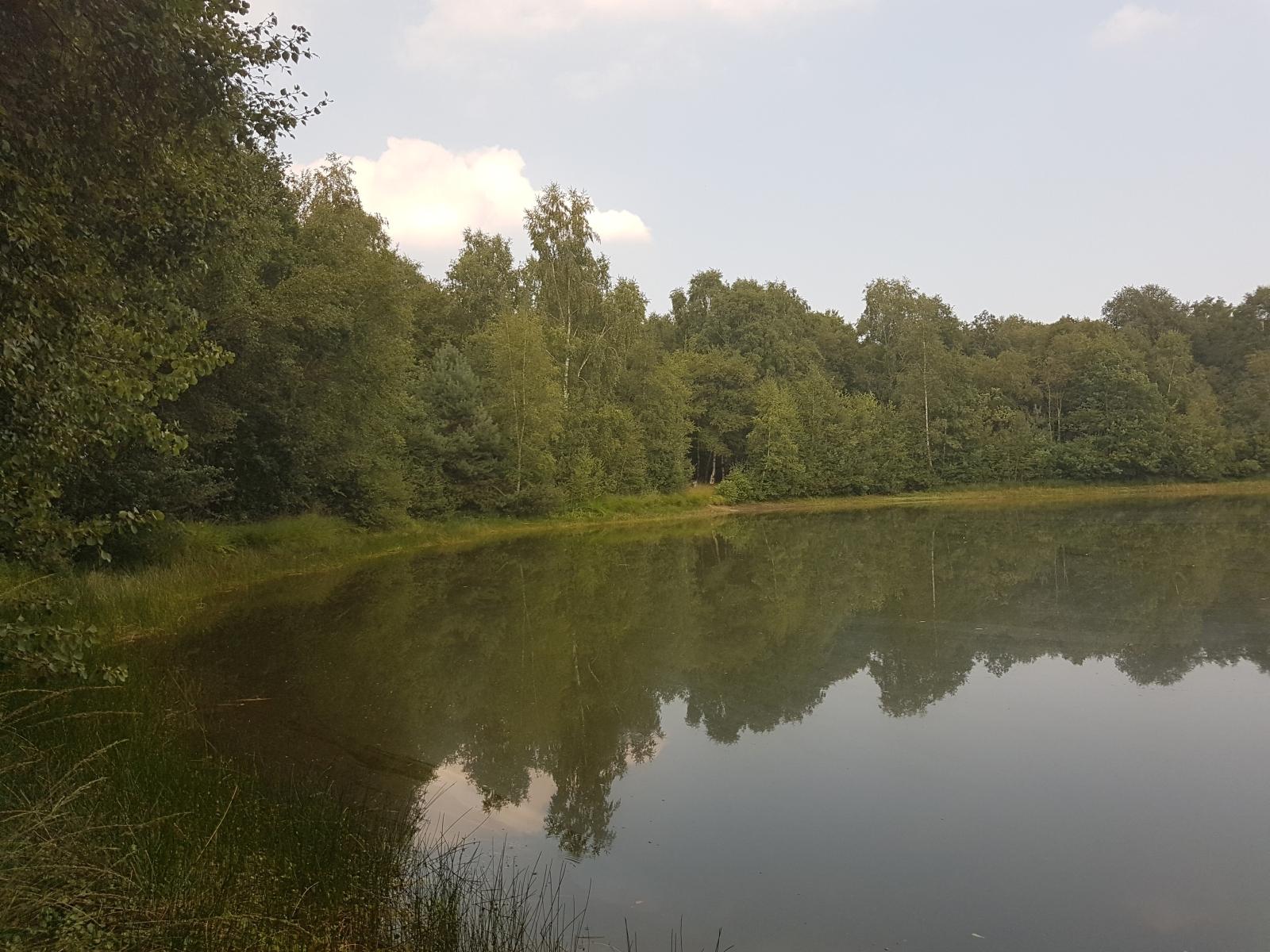 barenbergsee18