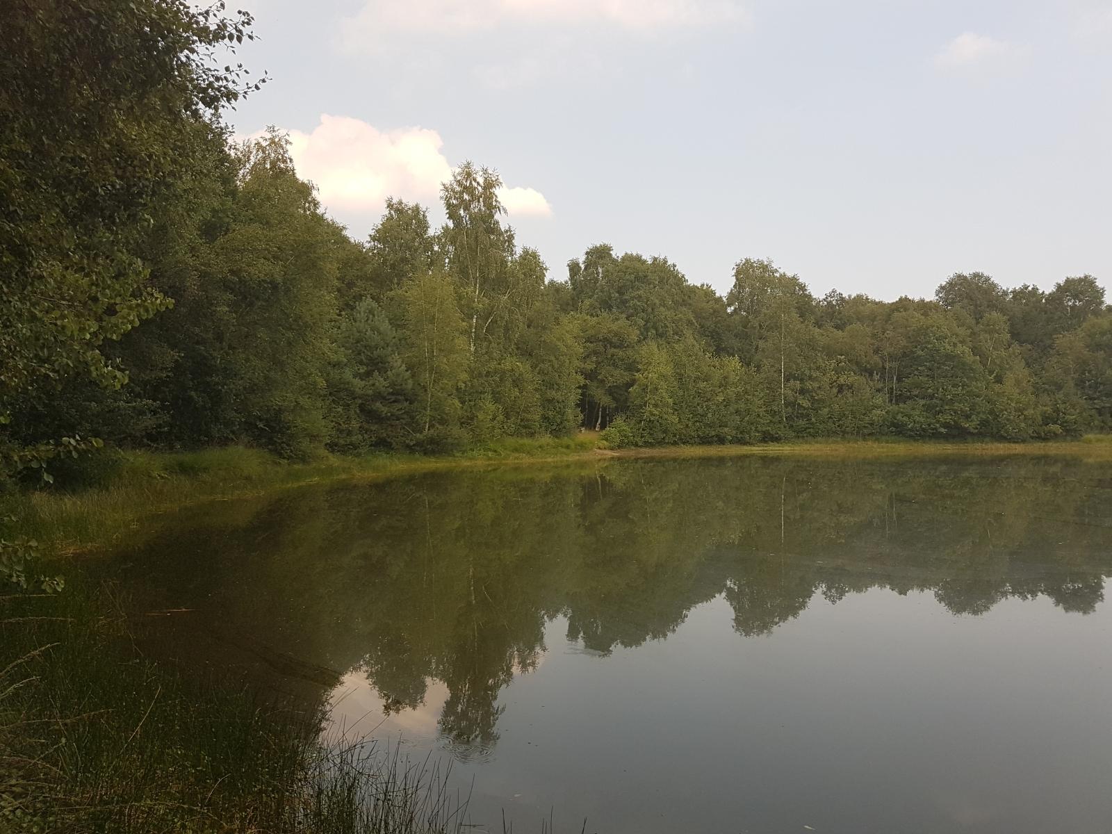 barenbergsee19