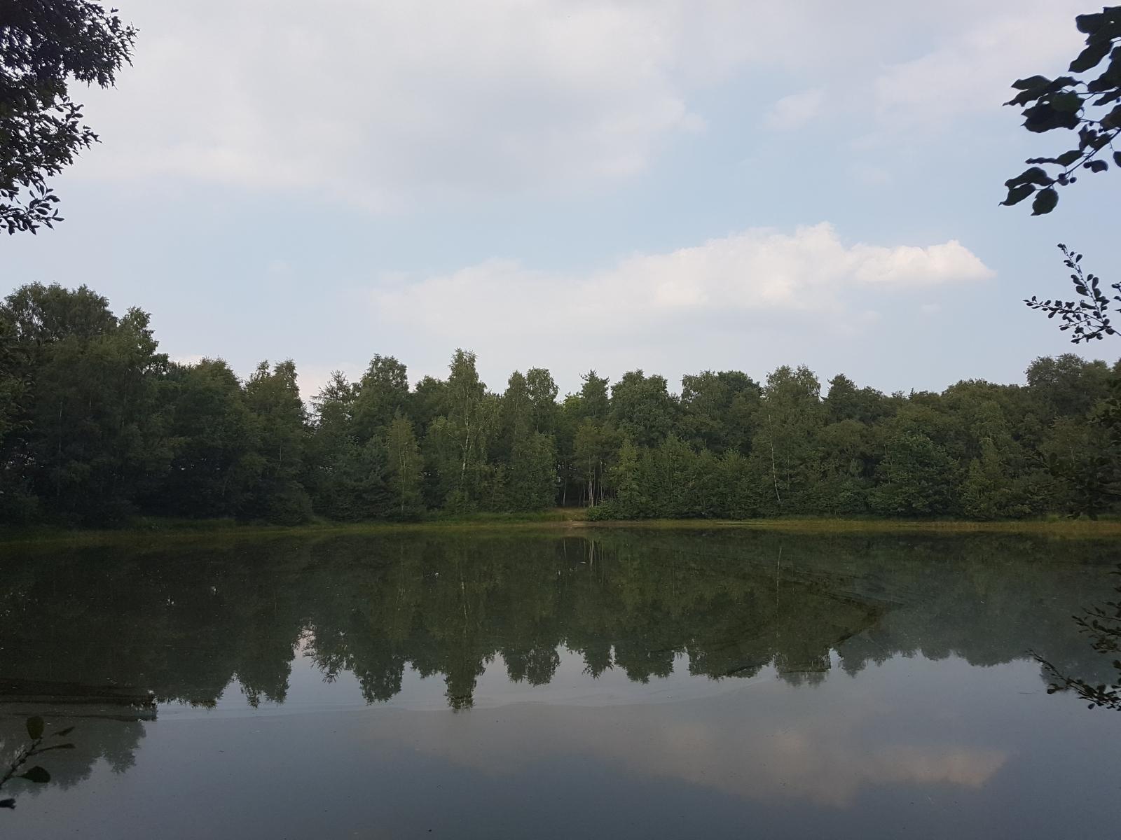 barenbergsee31